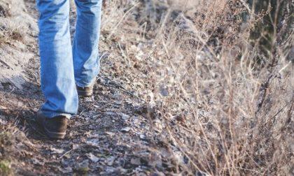 Litiga con la moglie e percorre 450 chilometri a piedi