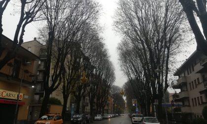 "Incubo ""spaccasassi"" anche in viale Romagna"