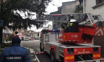 Ramo di un cedro secolare si spacca: intervengono i Vigili del fuoco FOTO