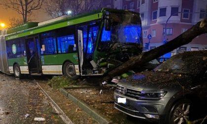 Autobus fa strage di auto parcheggiate