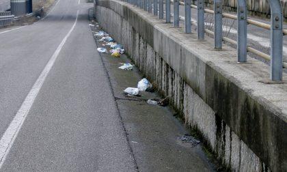 Giussano, stufo dei rifiuti sulla strada si rivolge ad un avvocato