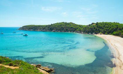 Una vacanza nel paradiso dell'isola d'Elba. Tutti i motivi per andarci e come arrivarci in modo facile, veloce, sicuro ed economico