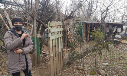 Vive in una baracca da luglio, Yana cerca casa e lavoro