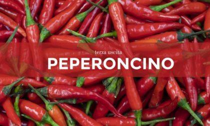 Tutti ortisti: in edicola con i nostri settimanali i semi di peperoncino