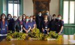 Mimose per infermiere e dottoresse impegnate nella lotta al Covid