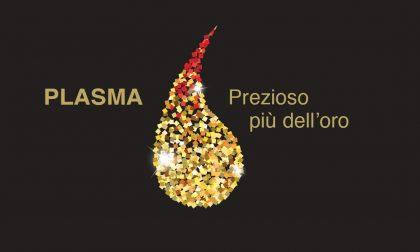 """""""Plasma prezioso più dell'oro"""", la nuova campagna Avis"""