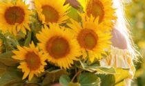 Marzo mese dell'endometriosi: Lentate si colora di giallo