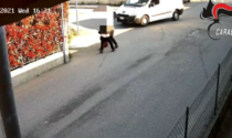 Ragazza sequestrata in pieno giorno dal fidanzato proprio sotto le telecamere