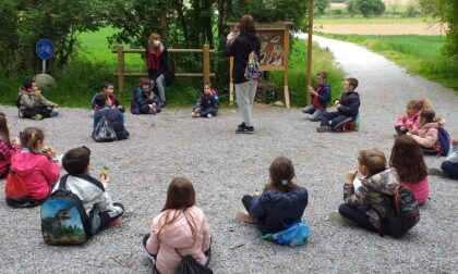 Gli studenti di Bellusco a lezione... di natura