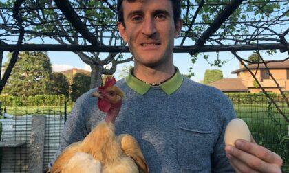 L'uovo record della gallina Gertrude