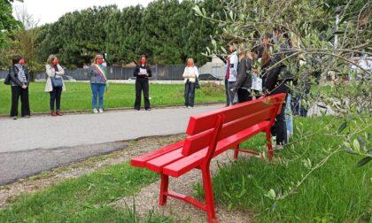 Violenza contro le donne, a scuola c'è una panchina rossa
