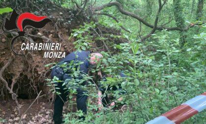 Ordigno bellico nel Parco di Monza: intervengono gli artificieri per farlo brillare