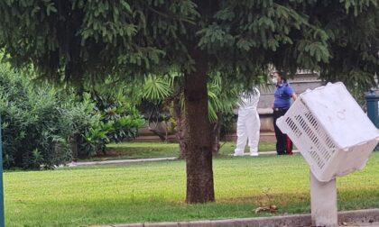 Quindicenne trovato morto in casa a Concorezzo, nessun segno di violenza sul corpo
