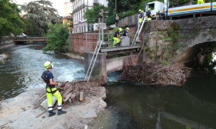 La Protezione Civile elimina rami e tronchi per alleggerire i ponti