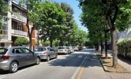Taglio di 121 alberi a Varedo, il sindaco ci ripensa