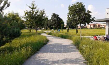 Il Parco di via Agnesi si chiamerà Parco delle Farfalle