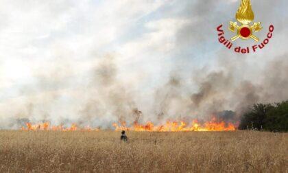 Incendio in un campo a Nova Milanese: le foto dell'intervento dei Vigili del fuoco