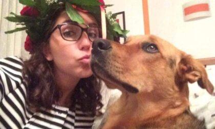 """Cane in overdose per un panetto di droga: """"I pusher hanno ucciso Margot"""""""