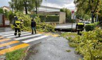 Maltempo in Brianza: in poche ore oltre 40 interventi dei Vigili del fuoco