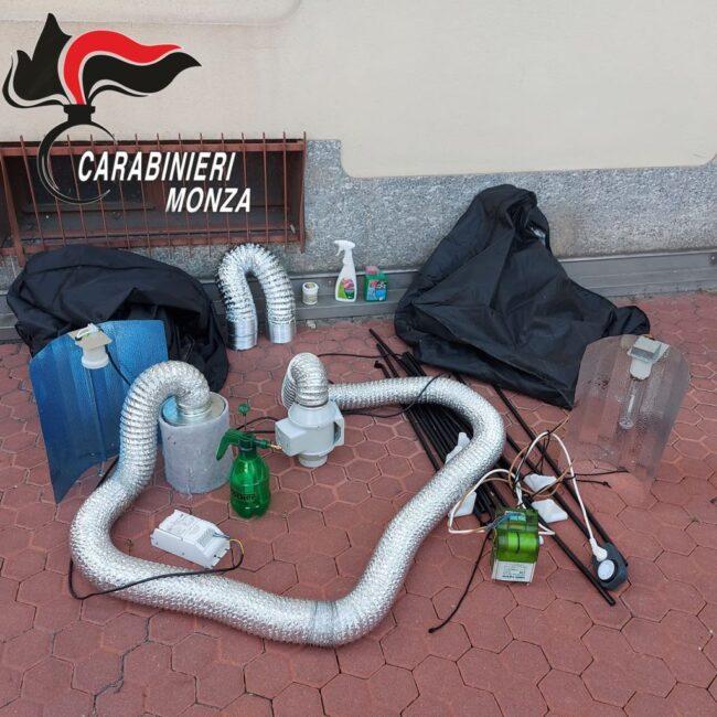 Cesano Maderno, marijuana sul terrazzo