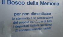 Svastiche sulla stele nel Bosco della memoria