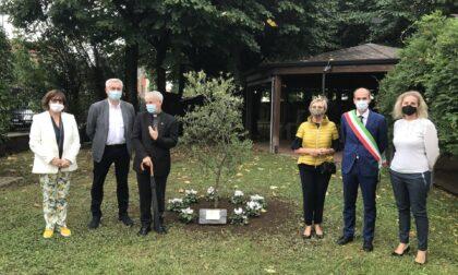 Un ulivo in casa di riposo per ricordare le vittime del Covid