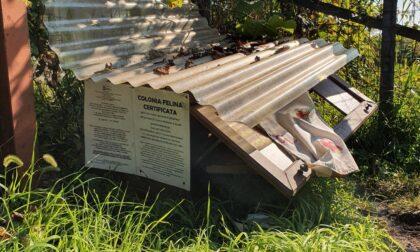 Distrutta la casetta della colonia felina